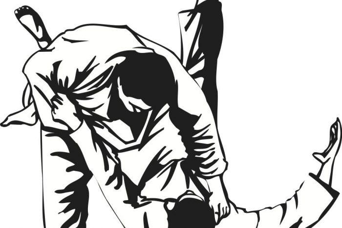 Sramota! Pogledajte plan rada džudo kluba iz Vršca za 2017. godinu