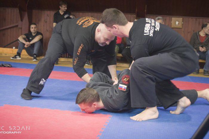 Održan Hall of fame seminar borilačkih veština u Zrenjaninu